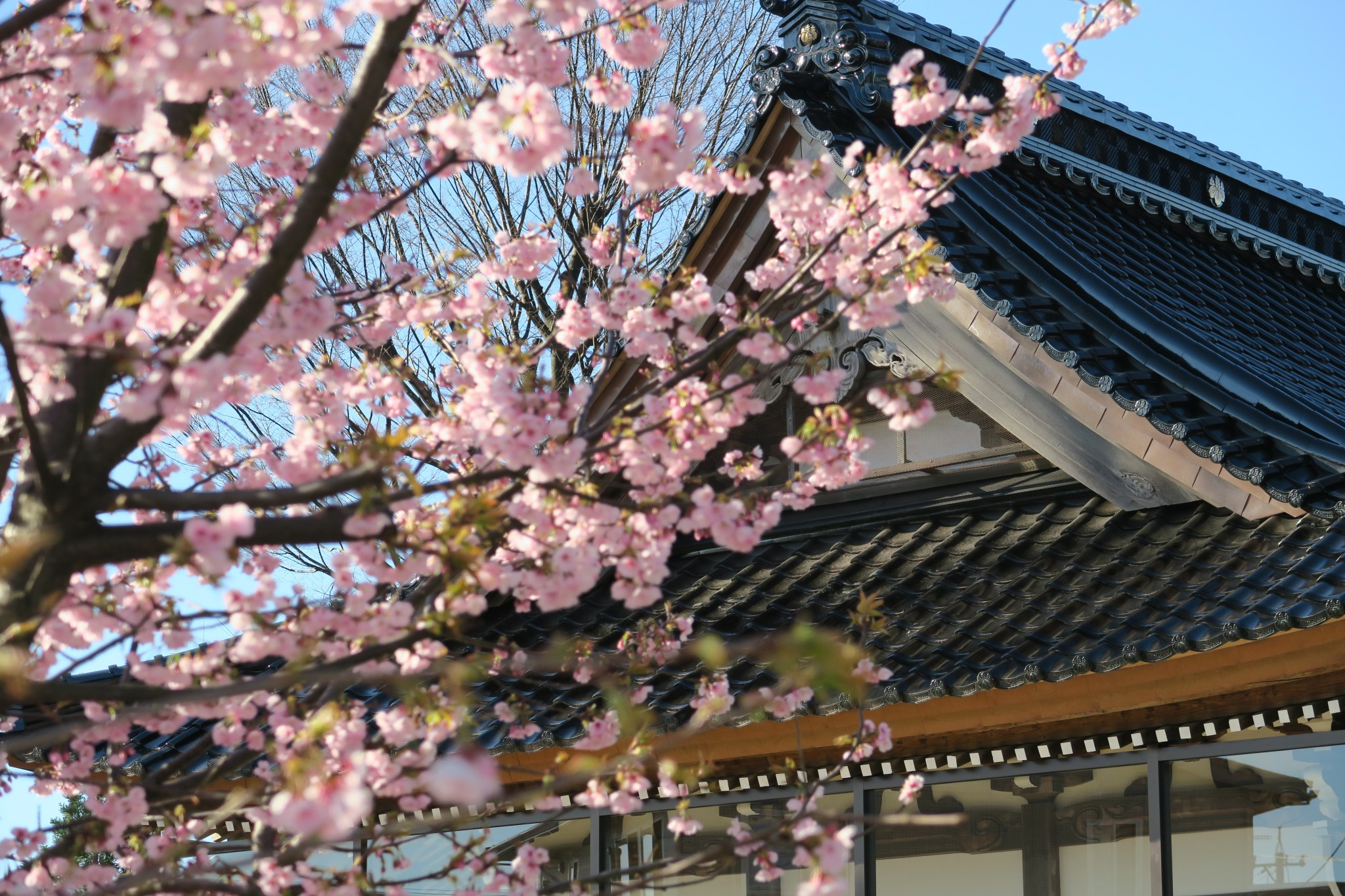 二日市荒川神社の新しくなった屋根瓦