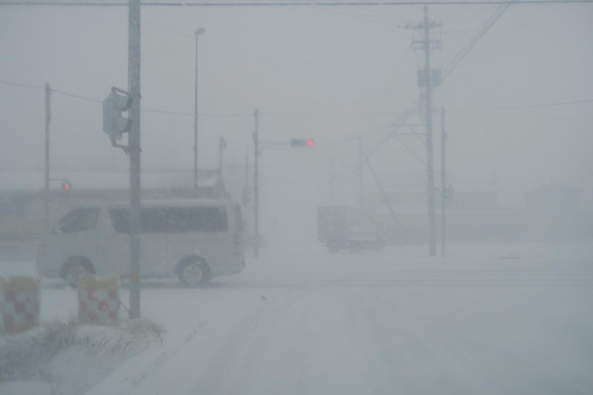猛烈な地吹雪と雪によって見えなくなる信号